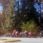 Bikes & BBQ